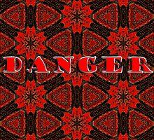 DANGER by Nira Dabush