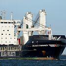 Beluga Stavanger - General Cargo Ship by Cecily McCarthy