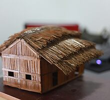 Folk Toy Home by Rabiul  Islam