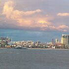 Melbourne panorama by Paul Campbell  Photography