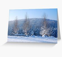 Winter trees Greeting Card