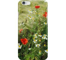 Country roadside iPhone Case/Skin
