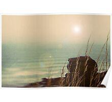 Coastal Brake Poster