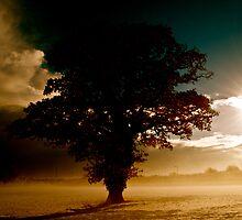 Stormbringer by marc melander
