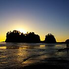 sun setting behind james island, washington, usa by dedmanshootn