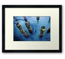 lichen pilings Framed Print