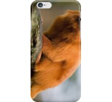 Tiny Golden Lion Tamarin iPhone Case/Skin