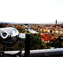 Cityscape, view of Florence from above - Italy by Francesco Malpensi
