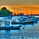 Peaceful Harbor by Monica M. Scanlan