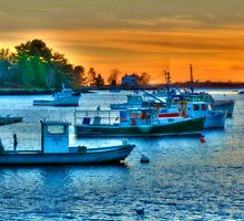 Peaceful Harbor by Monica M. Scanlan