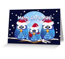 Owls with Santa hats Greeting Card
