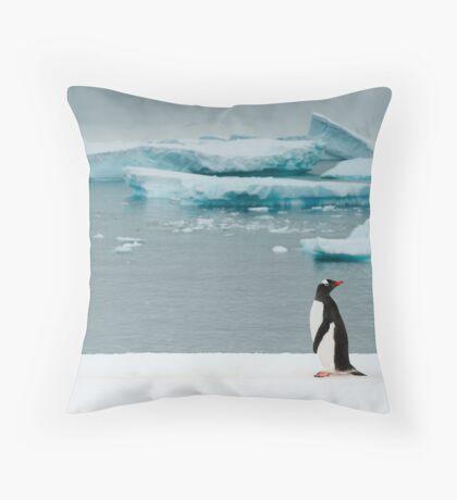 Gentoo on Ice Throw Pillow