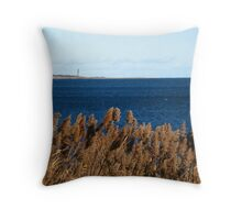 Thacher Island And The Bulrushes ~ Autumn Dance Throw Pillow