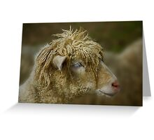 Dreadlocks Lamb Greeting Card