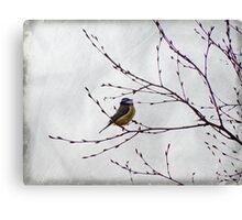 Perched Canvas Print
