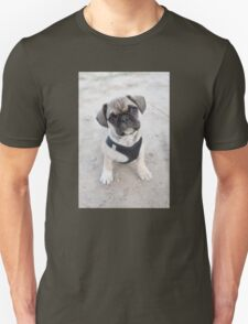 Cute puppy looking up T-Shirt