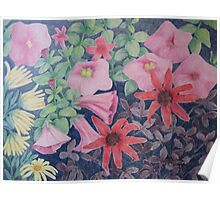 Mary's Garden, Late Autumn: Pink Petunias Poster