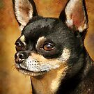 Chihuahua Portrait by Renee Dawson