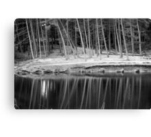 Tree-inversion Canvas Print