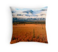 Jasper Outbound Throw Pillow