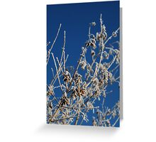 Winter Frost - Townclose Hills - Kippax Greeting Card