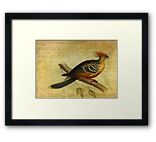 Whirring Pheasant Springs Framed Print