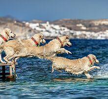 Winny jumping into the sea by Antonis Lemonakis