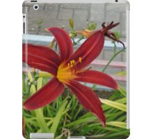 Live nature,red flower iPad Case/Skin