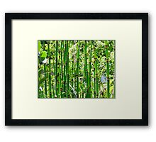 Reeds Along the River Framed Print