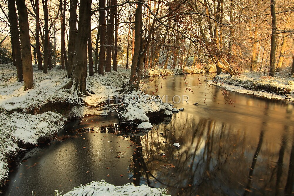 Lazy river turns bend in winter. by Fred Taylor