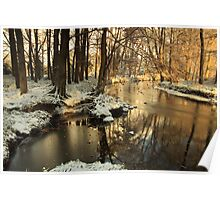 Lazy river turns bend in winter. Poster