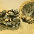 Walnuts by Doug Selway