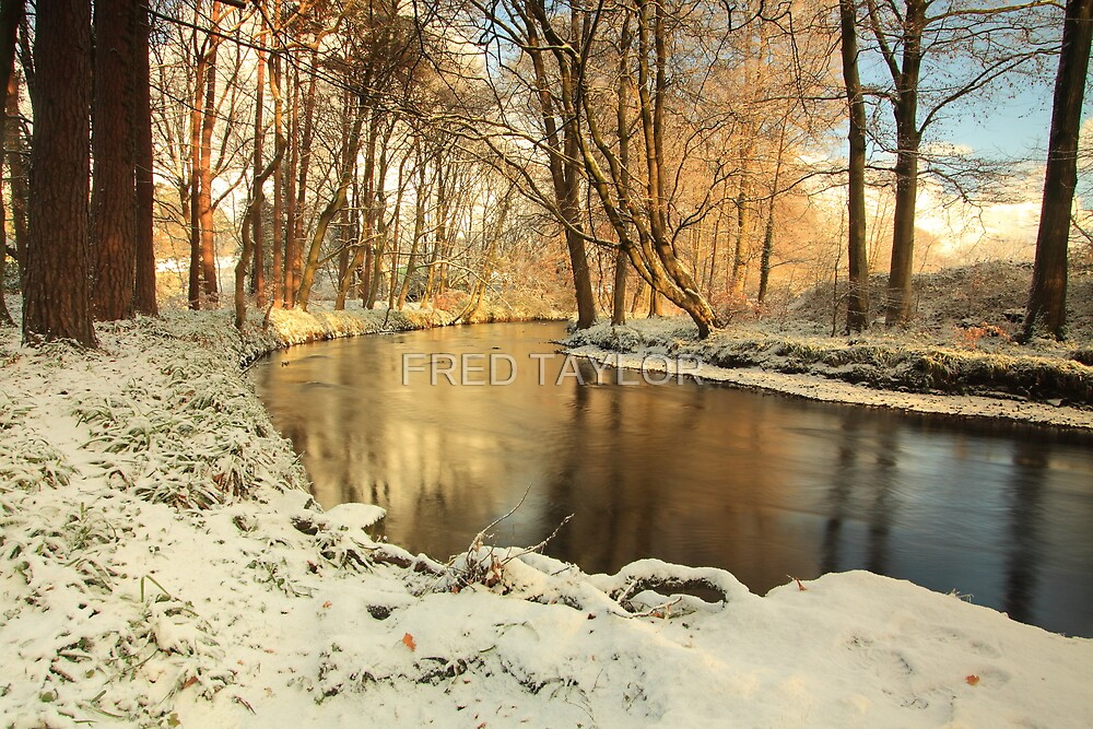 River lazily flows through the woods in winter. by Fred Taylor