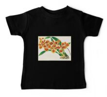 Iconagraphy of Orchids Iconographie des Orchidées Jean Jules Linden V17 1906 0059 Baby Tee
