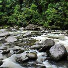 Mossman Gorge by Lindsay Woolnough (Oram)