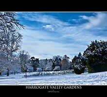 Valley Gardens in snow  by awsphotography