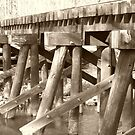 Old Rail Bridge by Sharon Woerner
