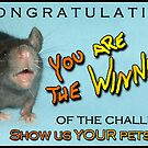 Callenge Winner Banner for Show us YOUR pets by KanaShow