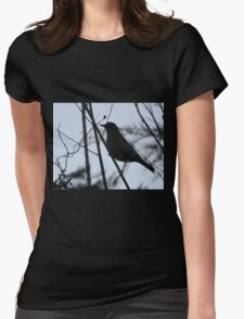 Evening Light Though My Window Womens Fitted T-Shirt