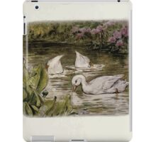 Jemima Puddle Duck Beatrix Potter 1917 0007 Search for Food Splish Splash Sploosh in the Pond iPad Case/Skin