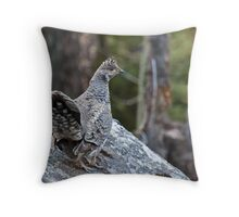 Blue Grouse at Fern Lake Throw Pillow