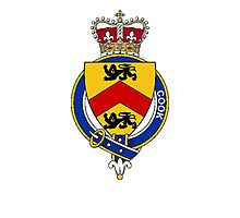 Coat of arms (family crest) for last-name or surname Cook (England) . Heraldry banner for your name. Photographic Print