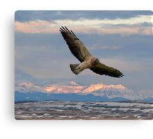 Sunrise Hunt  Canvas Print
