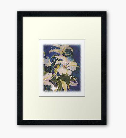 Flowers for Kathleen Framed Print