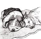 Tired Old Dogs by Pam Humbargar