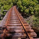 Tree top railway by BigAndRed