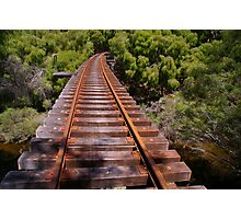 Tree top railway Photographic Print