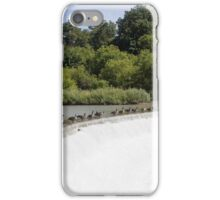 Weir Geese iPhone Case/Skin