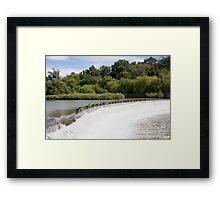 Weir Geese Framed Print