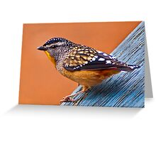 Spotted Pardalote (Pardalotus punctatus) - Thanks to Rick for the ID Greeting Card